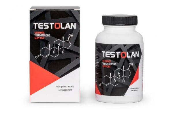 Testolan suplement zwiększający testosteron